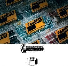 Fabory Slot Head Screw and Nut Set 400PC
