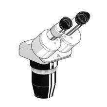 Euromex Trinocular Microscope Head