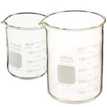Branson Bransonic Glass Beaker