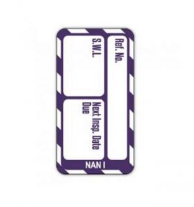 Scafftag Nanotag™ Safe Working Load Insert